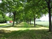 Kuhsee Zugang Allee Mittenwalder Straße